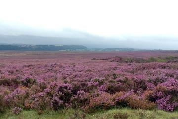 Haworth, The Famous Ilkley Moor and...