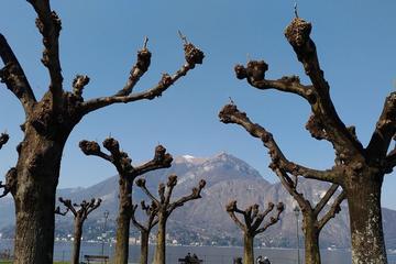 Food and Wine tour on Como Lake
