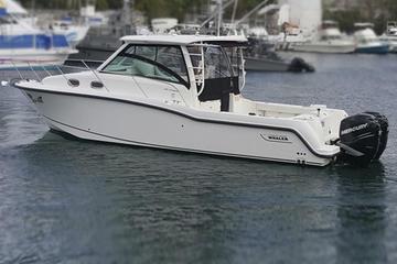 33 Ft, Boston Whaler