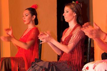 Spettacolo di flamenco al Tablao Flamenco El Arenal di Siviglia