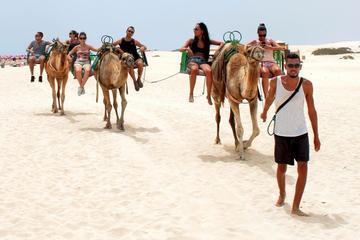 Recorrido en Buggy ecológico y paseo en camello por las dunas