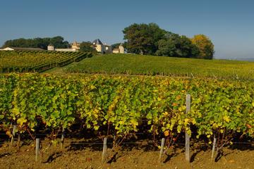 8-tägige Rad- und Bootstour Bordeaux: Castets-en-Dorthe nach Fronsac