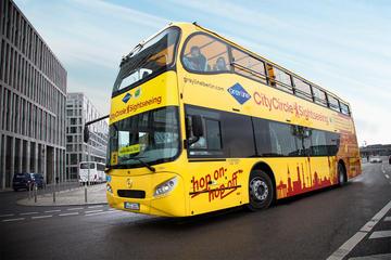 Visite touristique de Berlin en bus à arrêts multiples: Mitte...