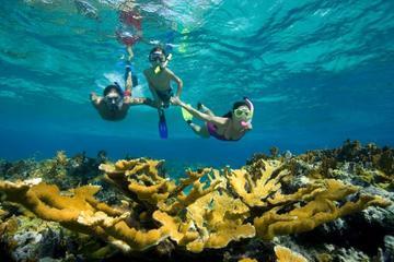Hurghada Day Tour Giftun Island Snorkeling Trip