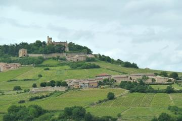 Half-Day Tour of Beaujolais Vineyards from Lyon