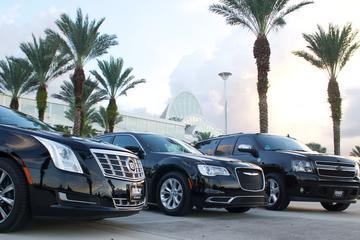 Traslado al puerto Orlando: Aeropuerto a Port Canaveral