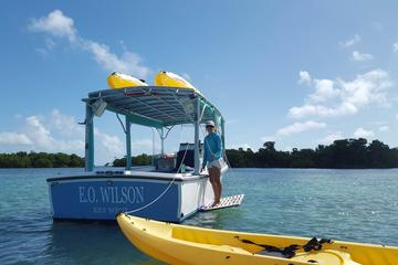 Key West Kayak and Snorkel Eco Tour