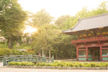 古き良き東京を体験:谷中ウォーキング ツアー