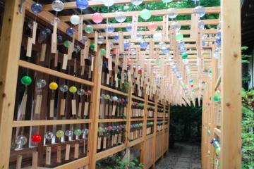 Experience Edo Castle Town: Kawagoe...
