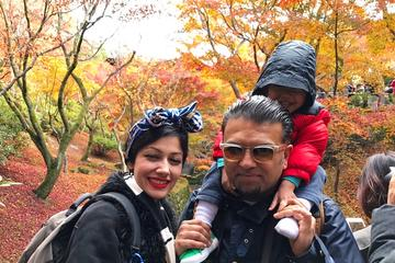 Full-Day Muslim-Friendly Kyoto Tour...