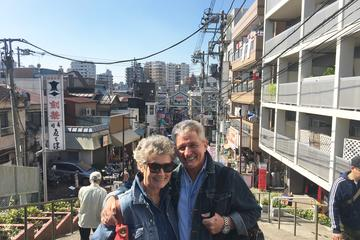 Maak kennis met het oude en nostalgische Tokio: wandeltocht door ...