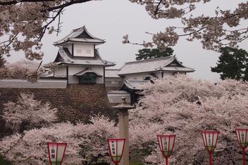 One-day Muslim Friendly Tour of Kanazawa