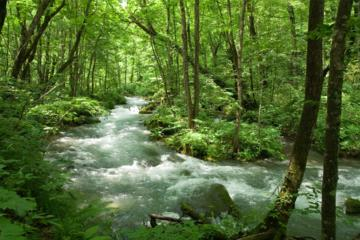Private Full Day Nature Tour of...