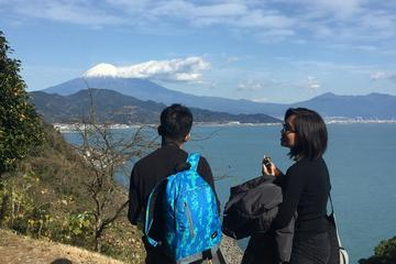 Mt.Fuji and Ocean View Ukiyo-e Walking Tour