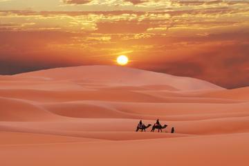 Excursión de 2 días por el desierto a...