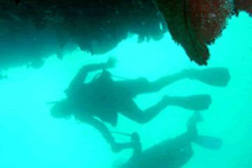 Inmersión con dos bombonas personalizada en Cabo San Lucas