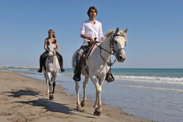 Passeio a cavalo por Los Cabos