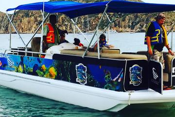 Private Personalized Snorkeling Tour in Los Cabos