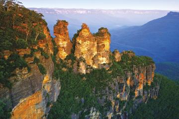 シドニー発ブルーマウンテンズの自然と野生動物を見学する日帰りツアー