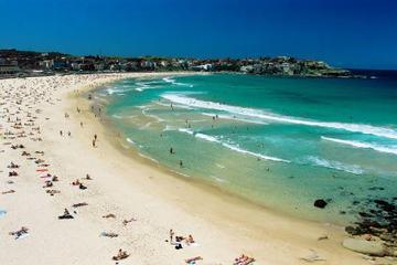 シドニー - ボンダイビーチとキングスクロス午…