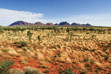 2 dages tur Uluru (Ayers Rock), kamelfarm og udflugt til Kata Tjuta...