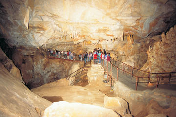 Dagstur med buss til Blue Mountains og Jenolan Caves