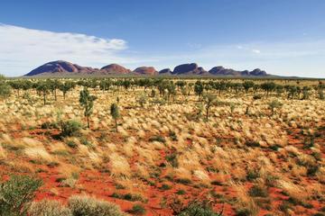 Escursione di 2 giorni a Uluru (Ayers Rock), all'allevamento di