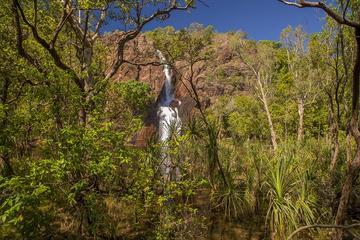 Gita di un giorno al Parco Nazionale di Litchfield da Darwin