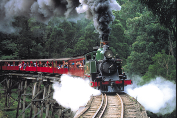Heldagstur med damptoget Puffing Billy, til Yarra Valley og...