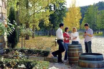 degustation-de-vins-au-depart-de-sydney-hunter-valley