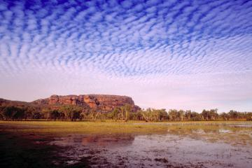 Kakadu Day Tour da Darwin a Kakadu compreso il sito d'arte Ubirr e la