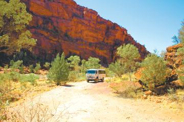 excursion-au-palm-valley