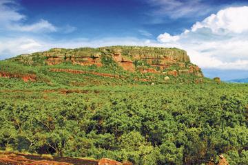 Tur til Kakadu, Nourlangie og Yellow Waters med valgfri flytur over...