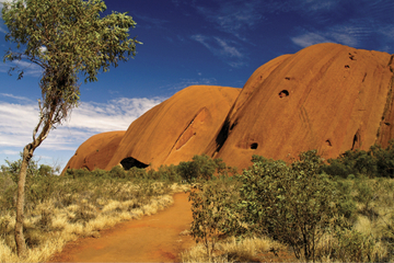 Voyage de 2 jours d'Alice Springs au parc national Explorer Uluru...
