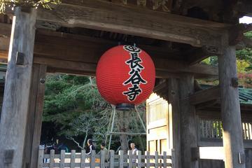 Full-Day Kamakura Tour from Tokyo ...