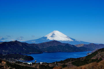 Private Custom Hakone from Tokyo with Pirate Ship Cruise