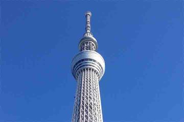 Tokyo City Private Tour by Subway