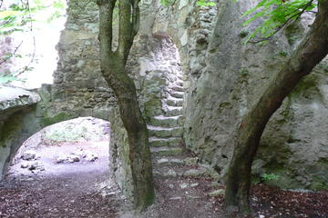2-Hour Alpine Small-Group Hiking Tour to Helenental Castle Ruins from ...