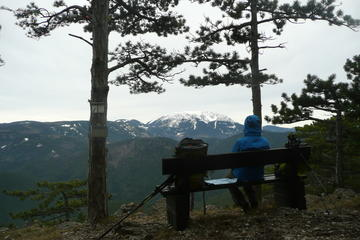 2 Hour Small Group Alpine Hiking...