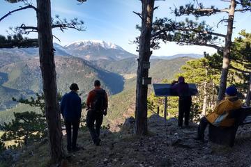 3-Hour Small-Group Alpine Hiking Tour through the walls of Gosing Mountain