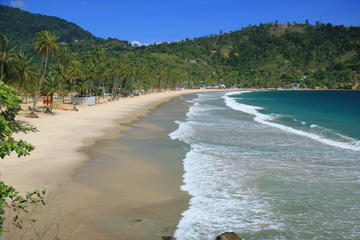 Day Trip to Maracas Beach