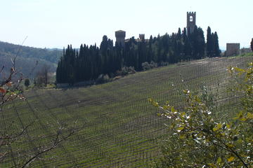 Florence Day Trip to Chianti and San Gimignano