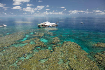 Great Barrier Reef Day Cruise from Cairns Including Snorkeling and ...