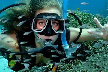 Bali Cheap Water Sport Package SCUBA DIVING,FLY FISH,JET SKY