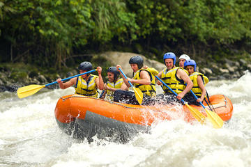Shore Excursion : White Water Rafting and Visiting Luwak Coffee Garden