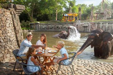 Half-Day Bali Zoo Explorer Tour