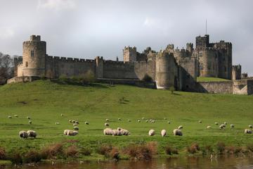 Dagtrip naar Alnwick Castle en de Schotse grens vanuit Edinburgh