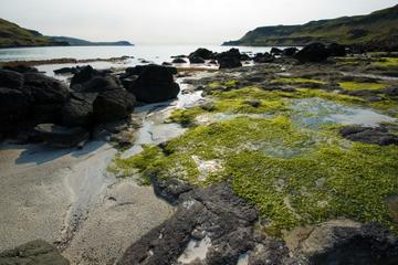Islas mágicas de Mull, Iona y Tierras Altas del oeste