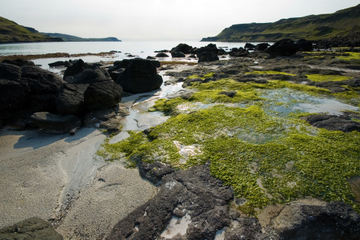 La magie de Mull, Iona et les îles...