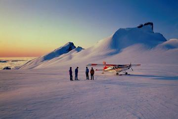 65-Minute Southern Alps Ski Plane Tour from Mount Cook